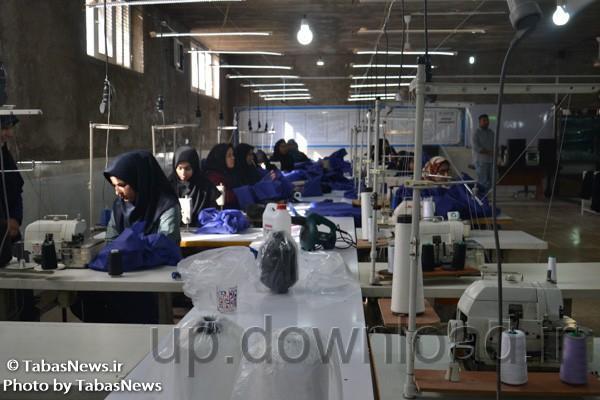 گزارش تصویری/ سفر رئیس ستاد ساماندهی و حمایت از مشاغل خانگی کشور به طبس
